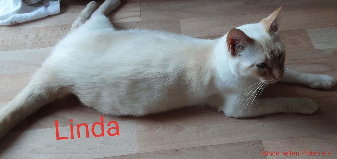 Linda01